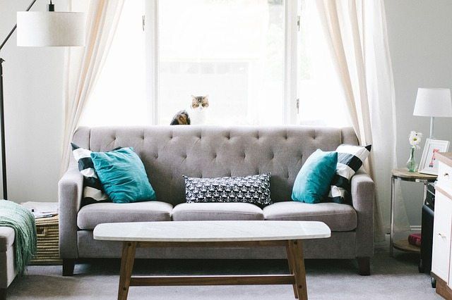 gray couch with blue decorative pillows