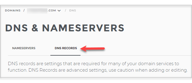 Connect Domain.com with Wix - DNS Records Tab