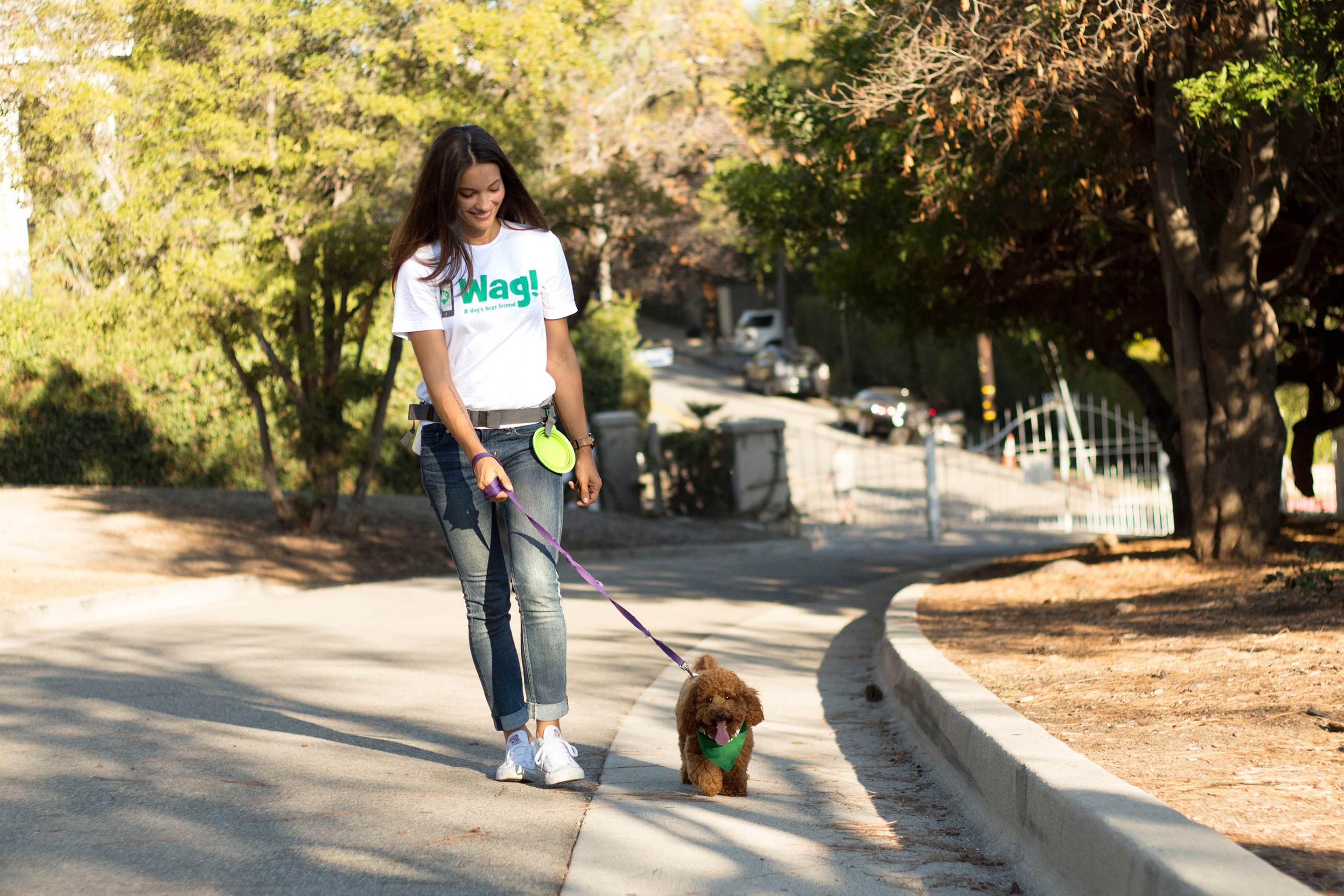 SoftBank Cuts the Leash on Troubled Dog-Walking Startup Wag