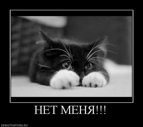 """Ответы@Mail.Ru: Срочно нужна картинка с надписью """"Меня нет ..."""