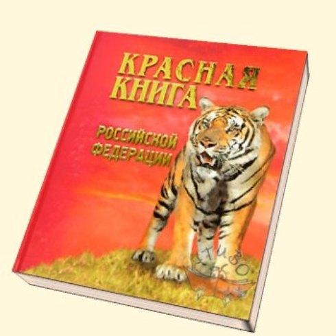 Животные Красной книги России. КРАСНАЯ КНИГА - это список ...
