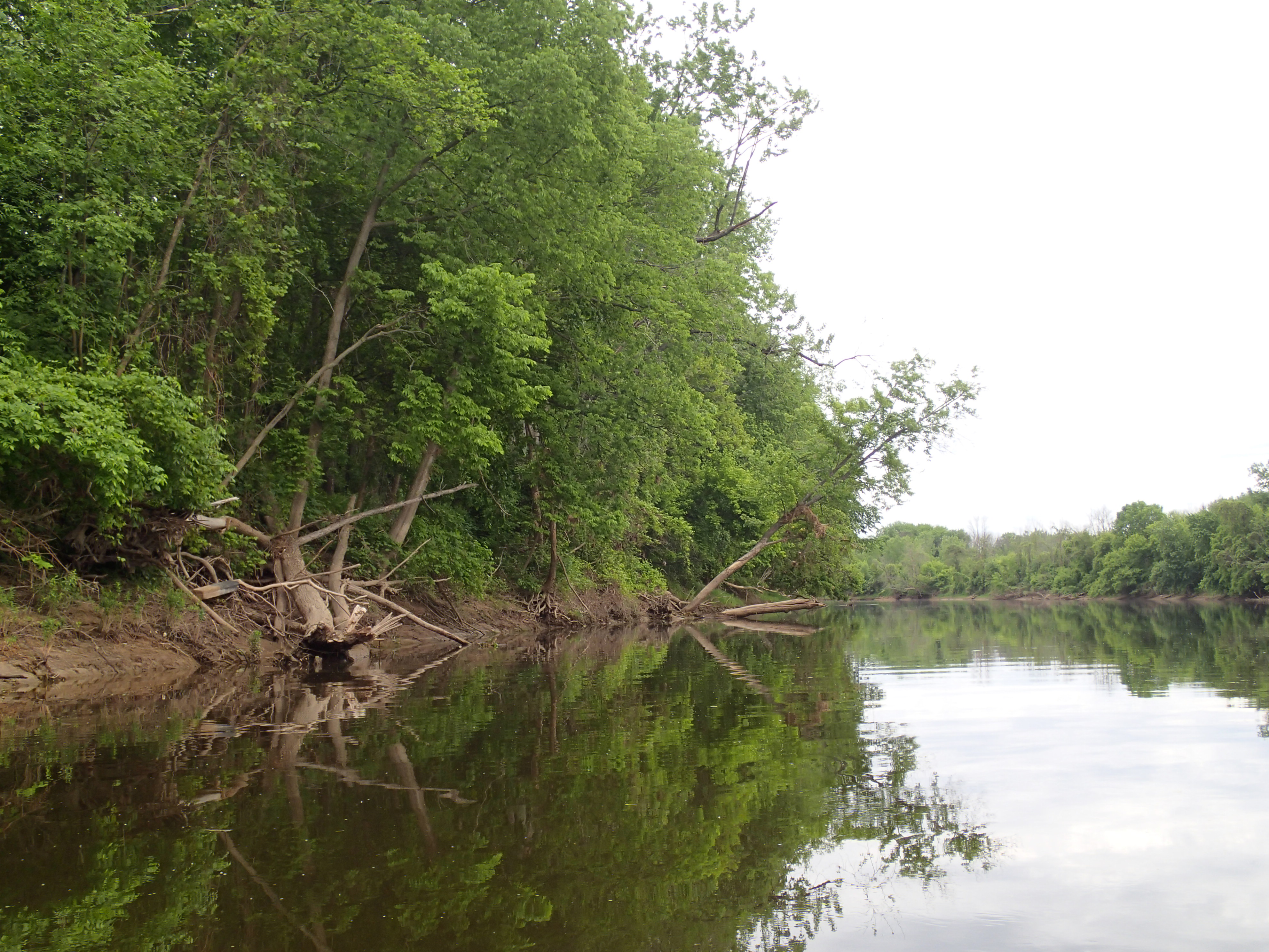 Dnr Settlement Reached With Dow Chemical Co To Restore