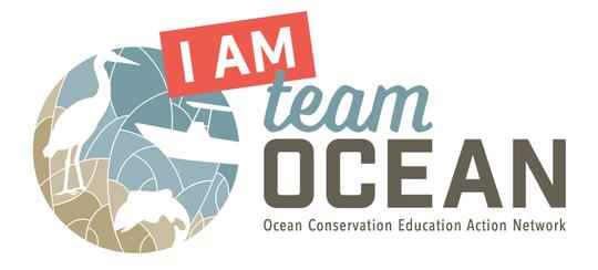 Team OCEAN