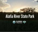 Alafia River blog cover graphic
