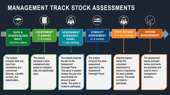 Management Track Stock Assessment, NOAA Fisheries, Northeast Fisheries Science Center