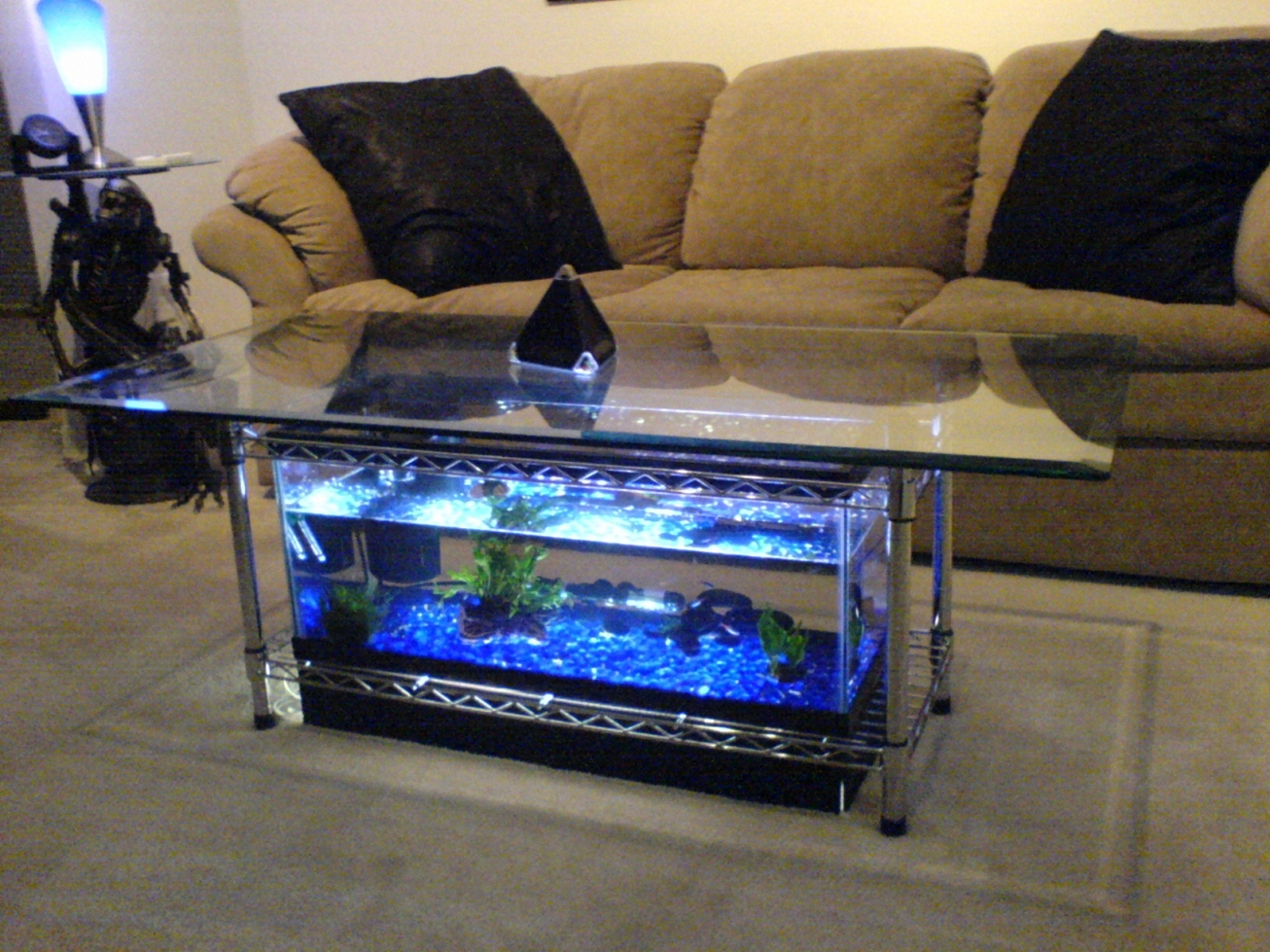 aquarium coffee table 7 steps with