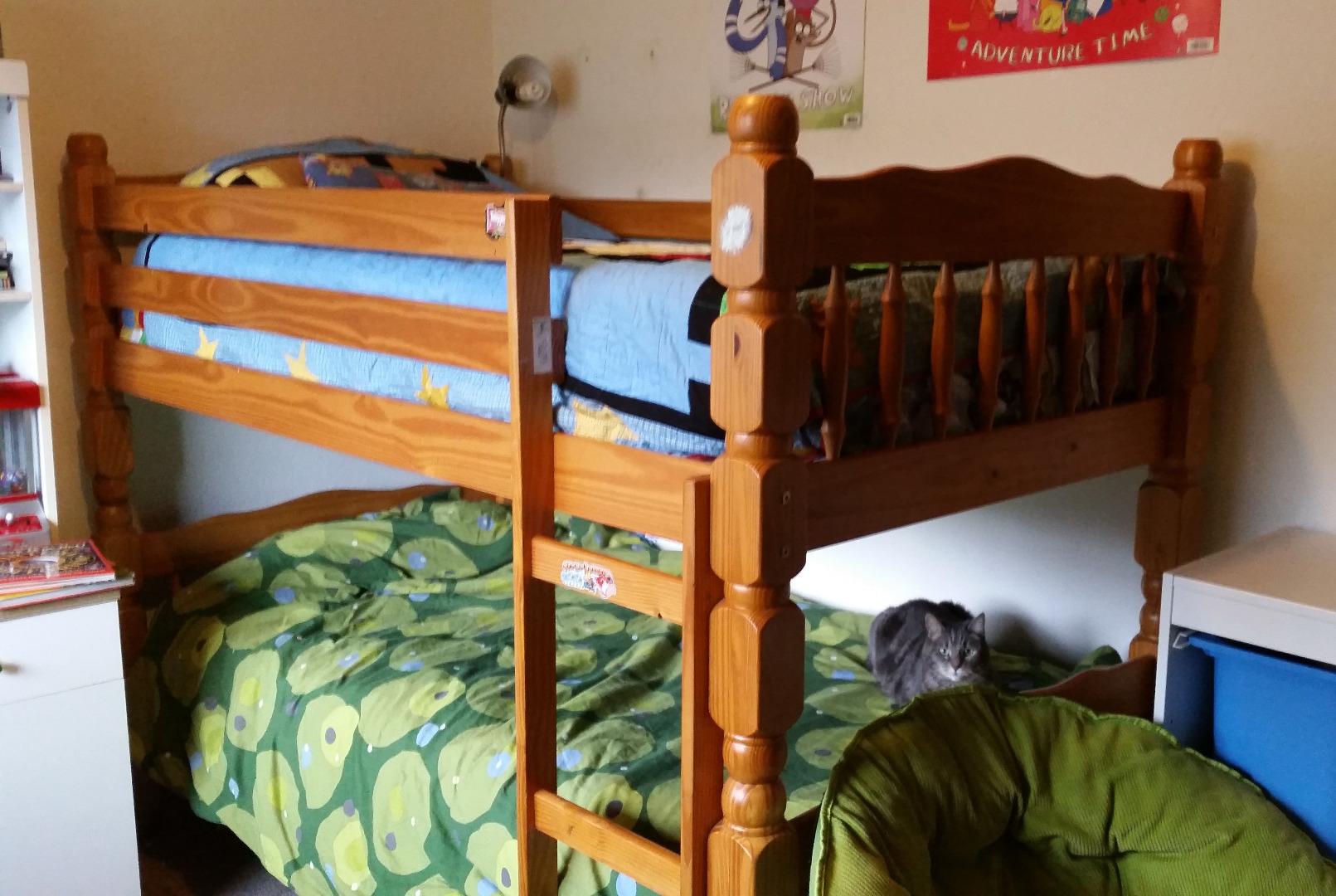kids bunk bed to tween loft hangout