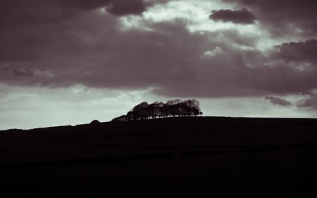 Dovedale – black and white landscape photos from Andy Sawyer
