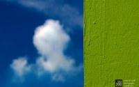 Photo blog photo: 'Natural diptych'