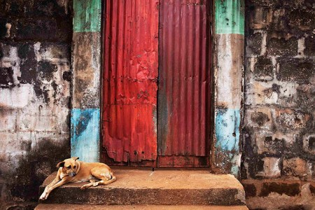 Freetown's cabins recall the birth of the colony – in pictures