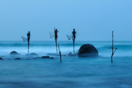 Winners of the National Geographic Photo Contest 2012