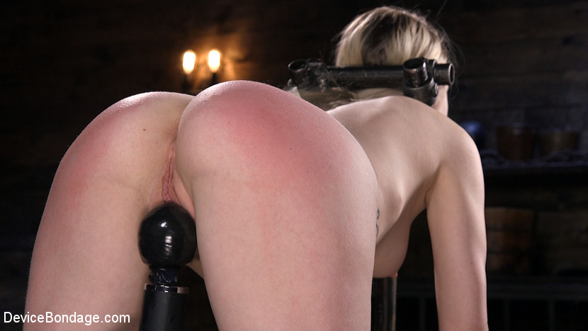 Fresh Meat: Violet October Gets the Full Treatment - domination
