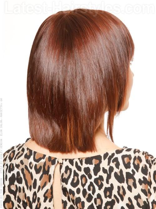 The Fringe Shiny Long Brunette Layered Bob Hairstyle Back View