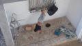 اليونيسيف ممتعضة من العنف المسلط على الأطفال داخل الأسر في تونس