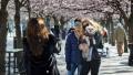 رغم أكثر من 2000 إصابة بكورونا: لا حجر صحي ولا إغلاق للمدارس في السويد