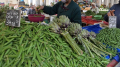 إنخفاض أسعار الخضر خلال شهر جوان  بحوالي 16%