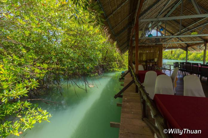 chaiyo-restaurant-phuket