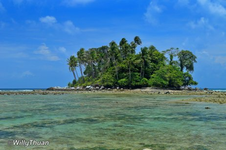 a small island with coconut trees in front of Nai Yang Beach