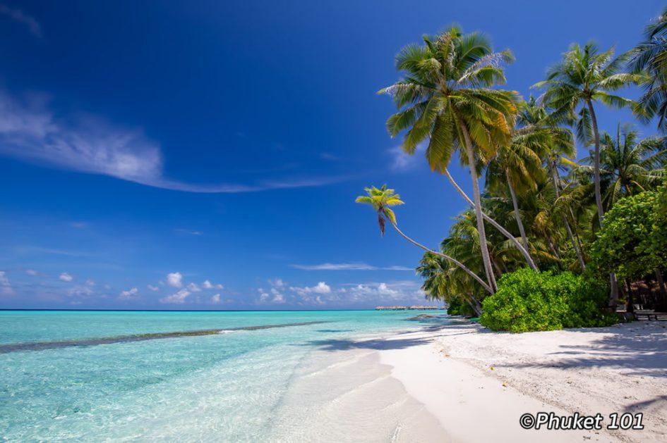 The Maldives, a dream come true