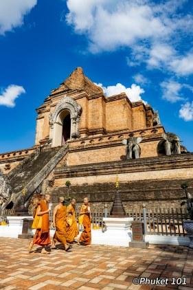 wat-chedi-luang-monks