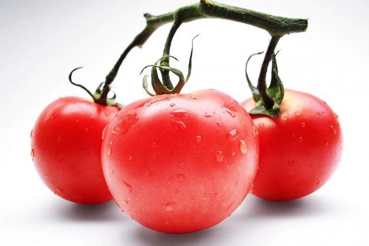 tomatoes-709345-960-720.jpg