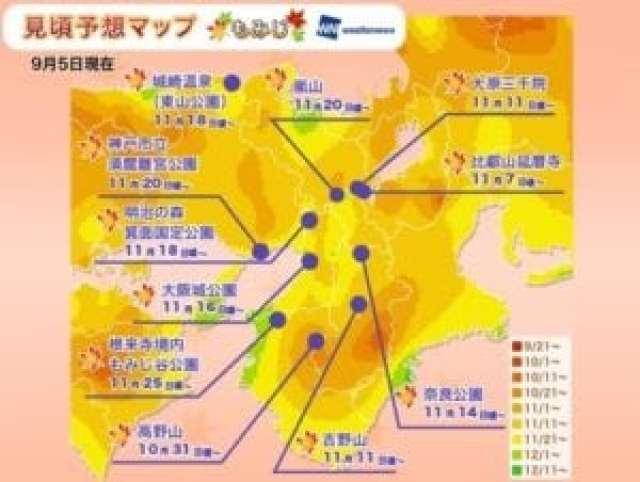 京都地區賞楓時間表