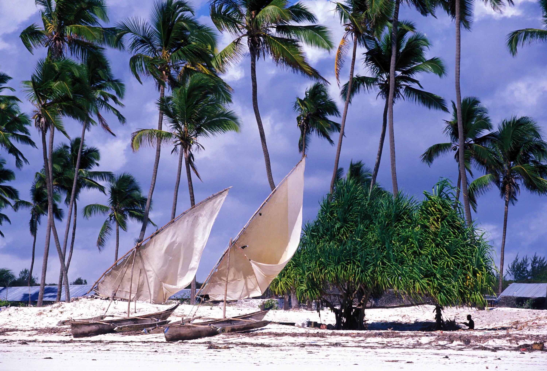Billigste reiseliv i Afrika - Tanzania, Zanzibar Island