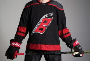 Image result for carolina hurricanes alternate jersey