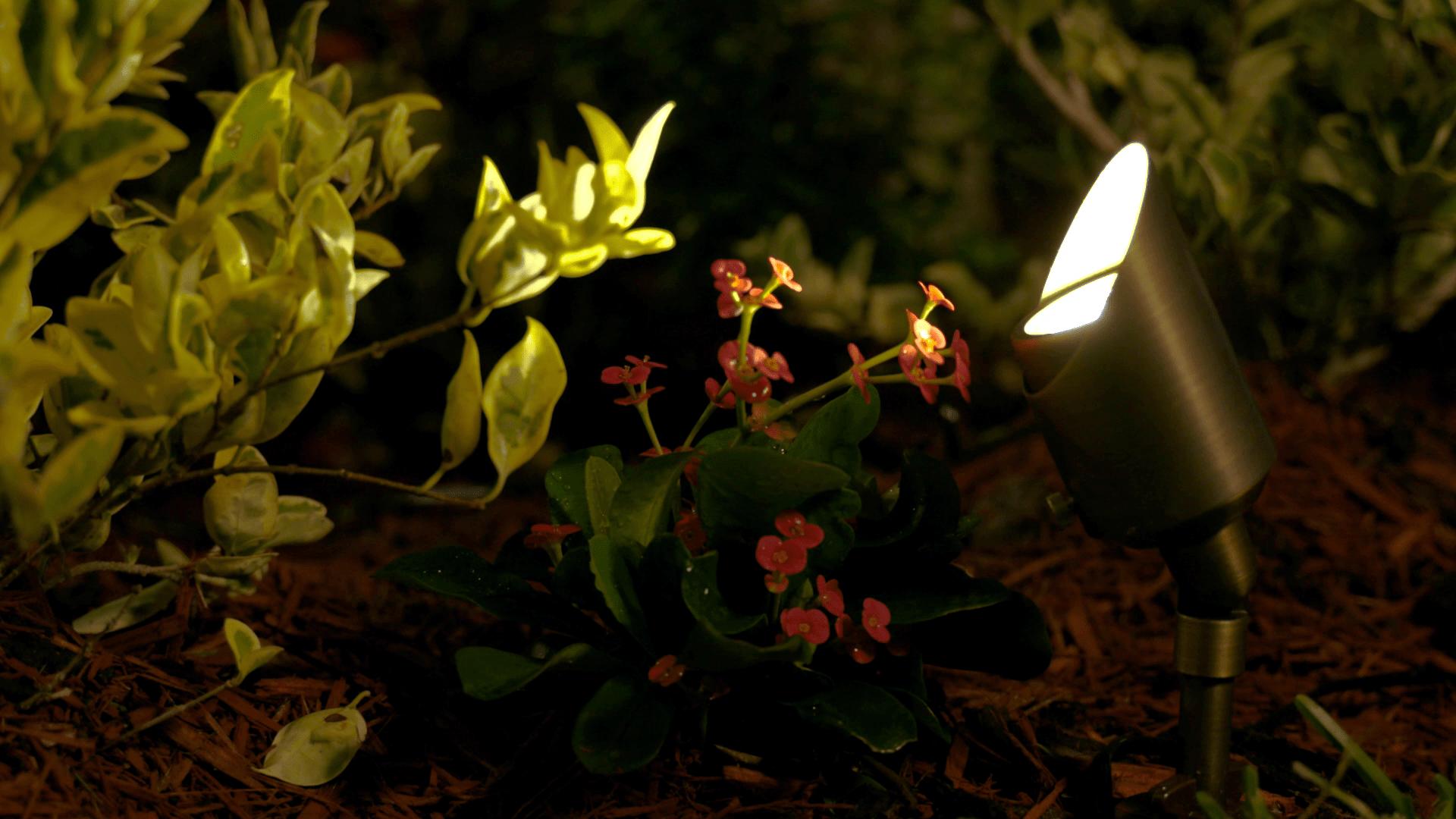volt landscape lighting 6 spotlight brass led starter kit