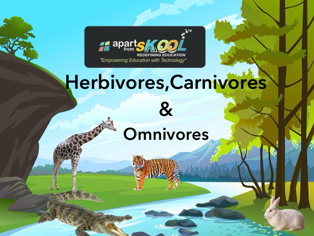 Play Herbivores Carnivores Amp Omnivores By Apart From Skool
