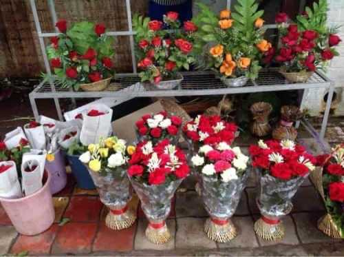 Image result for images of dewdrop florists chandigarh