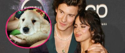 Shawn Mendes and Camila Cabello's new puppy are so cute!