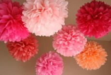 Pink pom poms
