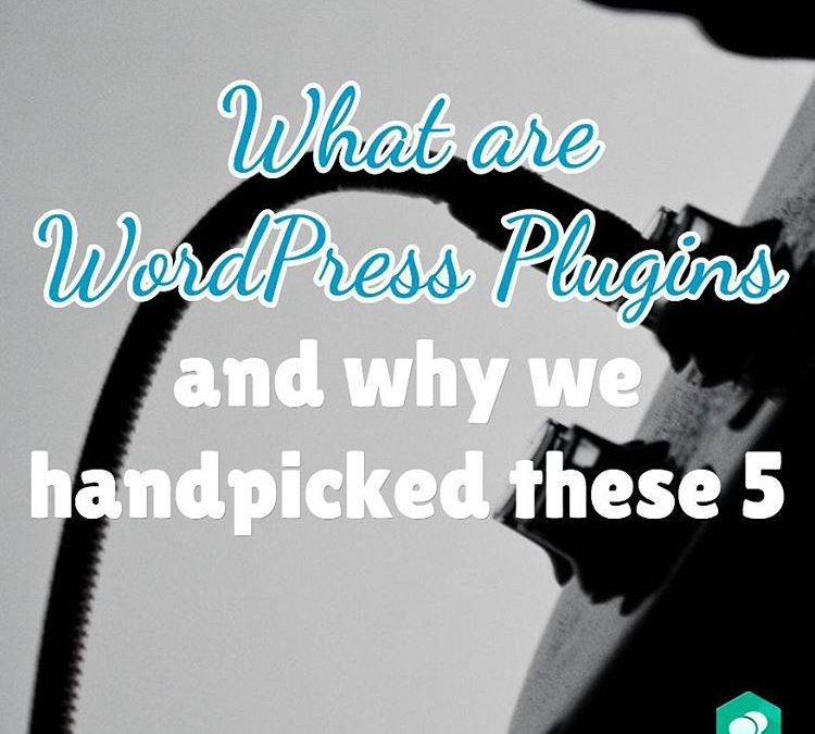 What are WordPress Plugins and why we handpicked these five!