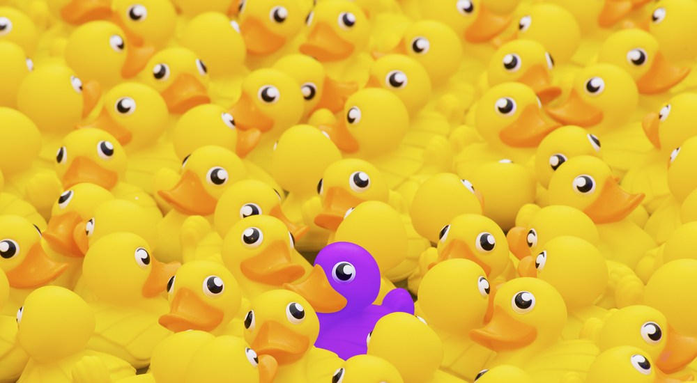 Searching for the Purple Duck The Content Advisory Robert Rose ducks rubber ducky