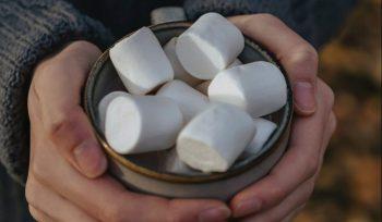 hands cradling marshmallows