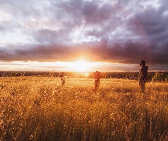 People in a wheat field
