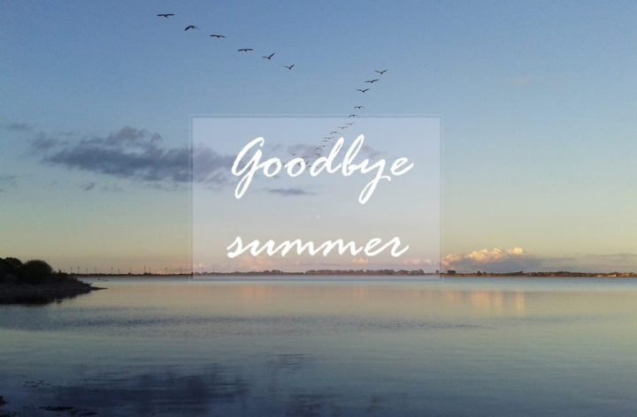 goodbye summer1