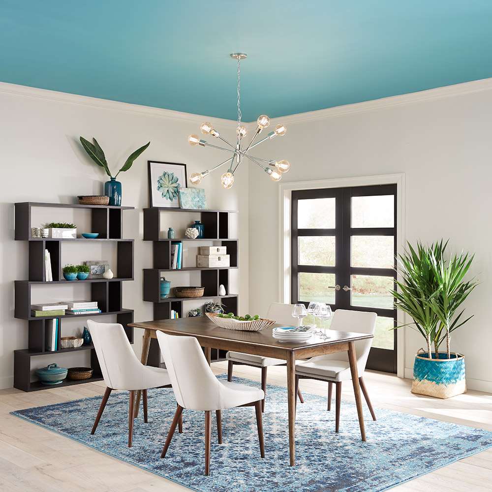 Ceiling Paint Ideas for Your Home - The Home Depot on Painting Ideas For House  id=26167