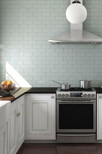 Flooring   Wall Tile  Kitchen   Bath Tile Classic Contrast featuring Glass Subway Tile