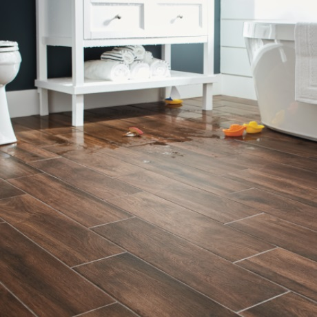 LifeProof Autumn Wood 6 In X 24 In Porcelain Floor And