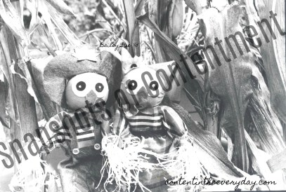 Owl Scarecrows Facebook Image for Blog