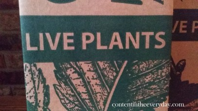 Live Plants_with text