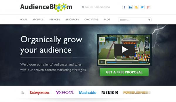 audiencebloom-example-image 2