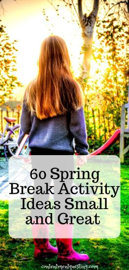 spring break activities template 1 pin