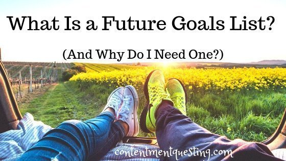 Future Goals List
