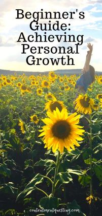Achieving Personal growth pin 2