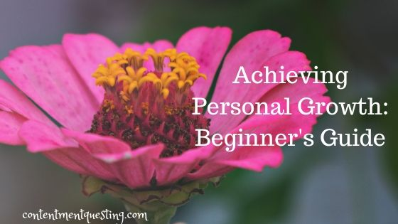achieving personal growth beginner guide blog banner