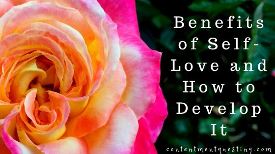 benefits of self love and how to develop itblog banner