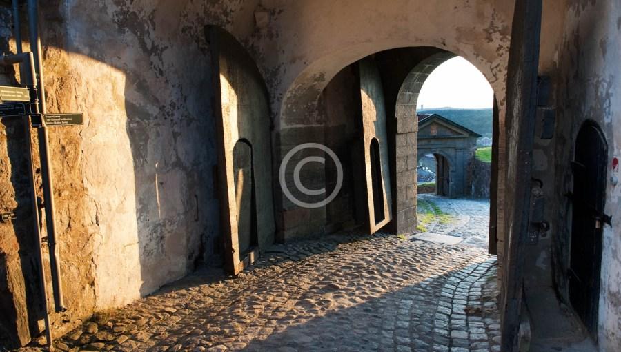 De nedre portene